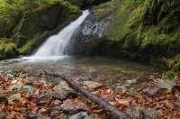 2014-10-fabian-mueller-herbstlicher-wasserfall
